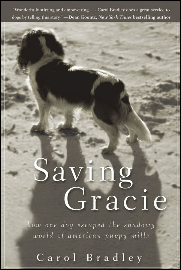 Saving Gracie By: Carol Bradley