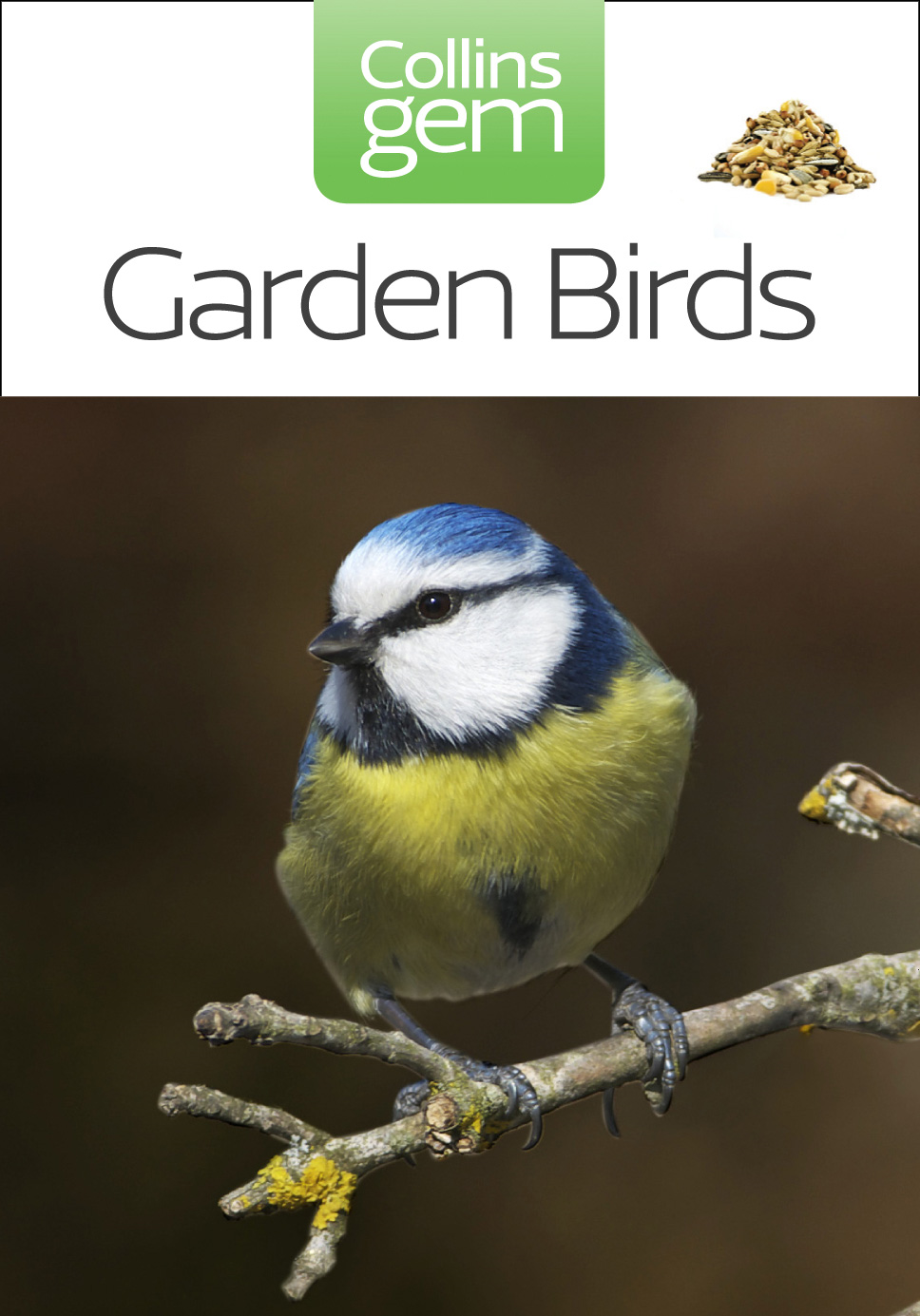 Garden Birds (Collins Gem)