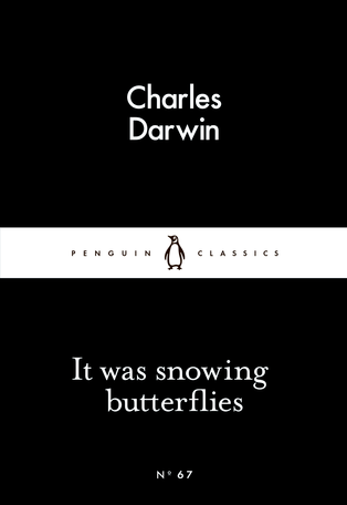 It Was Snowing Butterflies