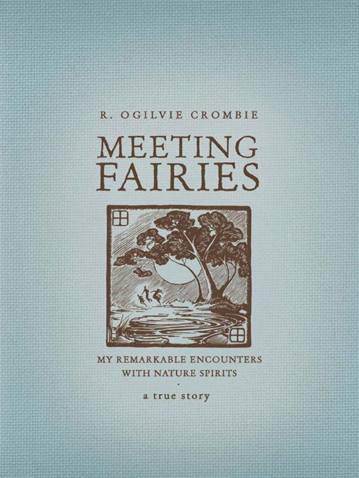 Meeting Fairies: My remarkable encounters with nature spirits