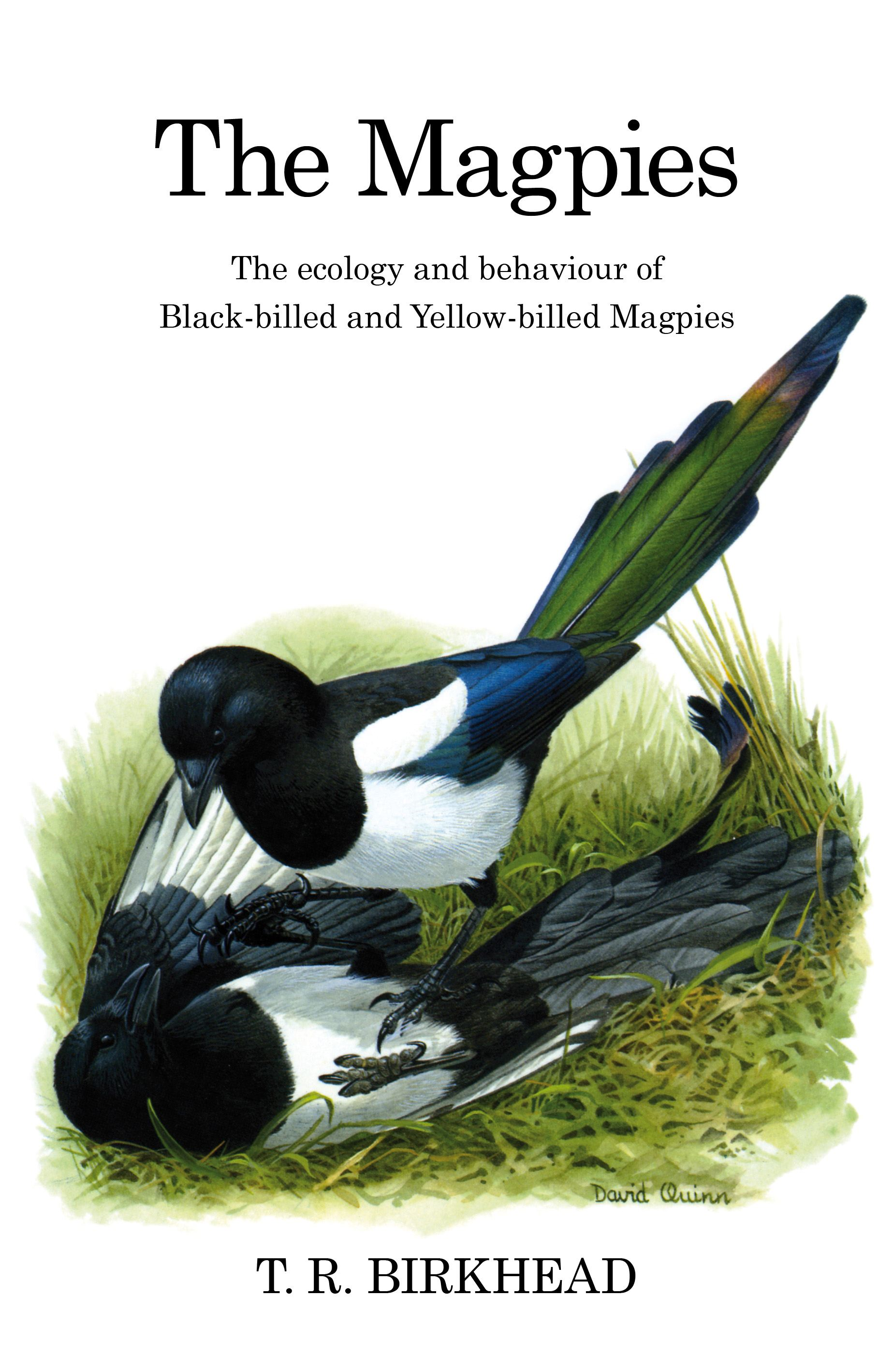 The Magpies: The Ecology and Behaviour of Black-Billed and Yellow-Billed Magpies By: Tim Birkhead