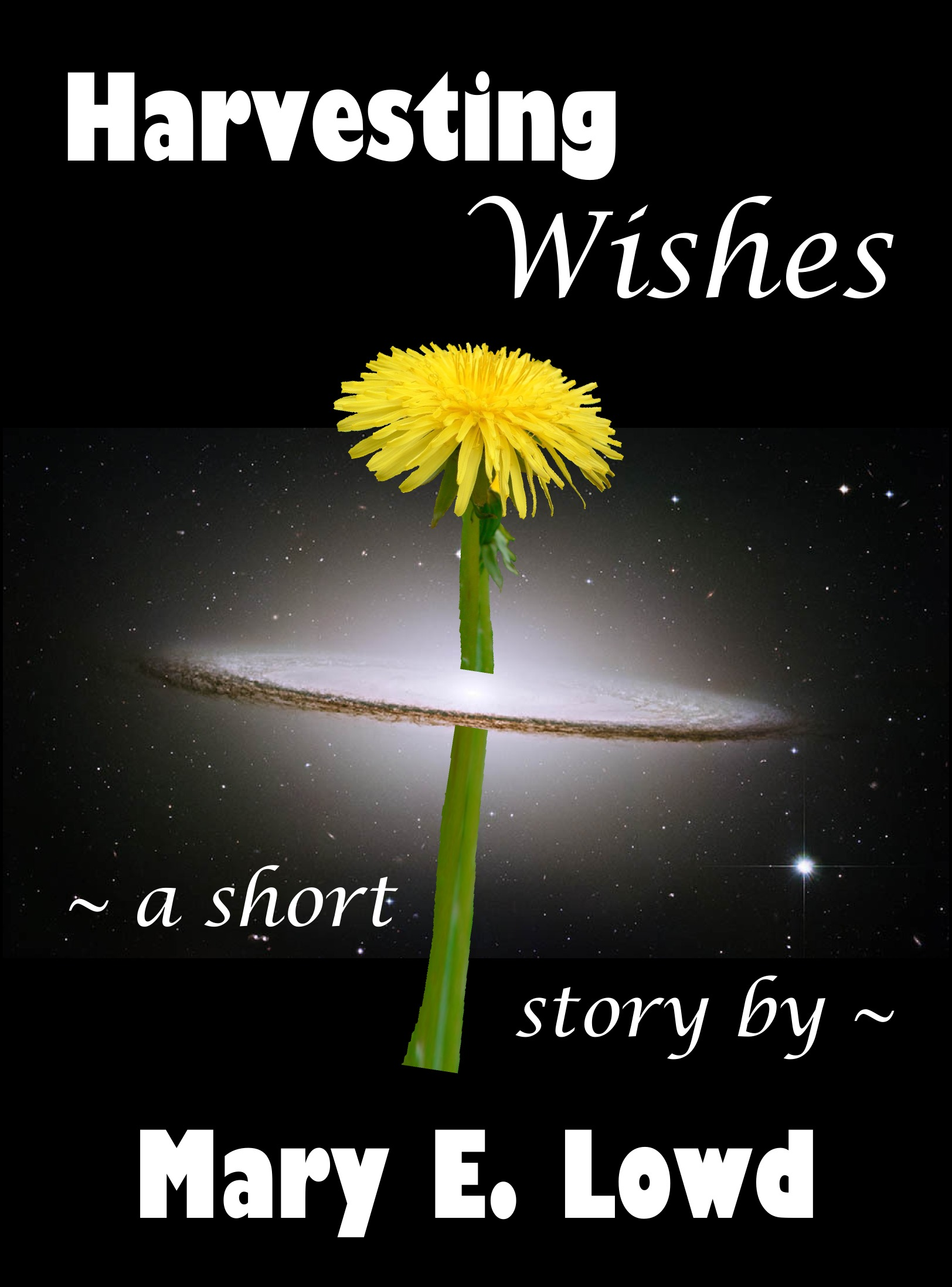 Harvesting Wishes