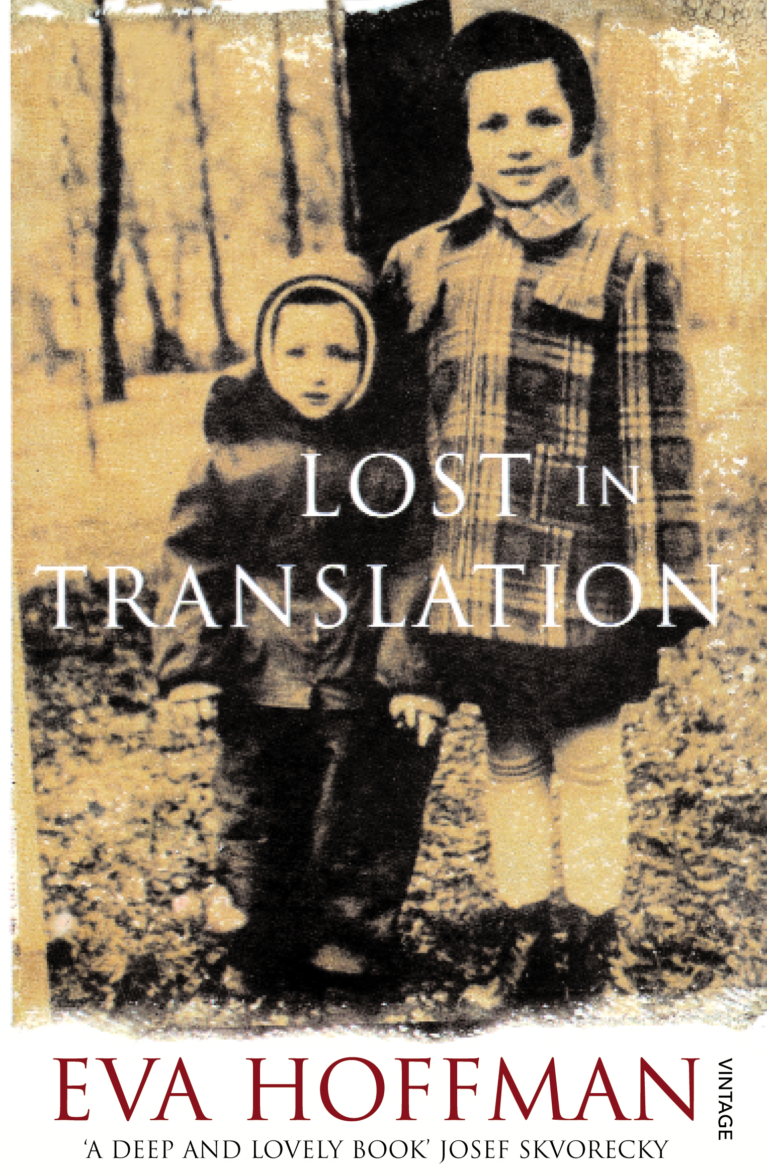 Lost In Translation A Life in a New Language