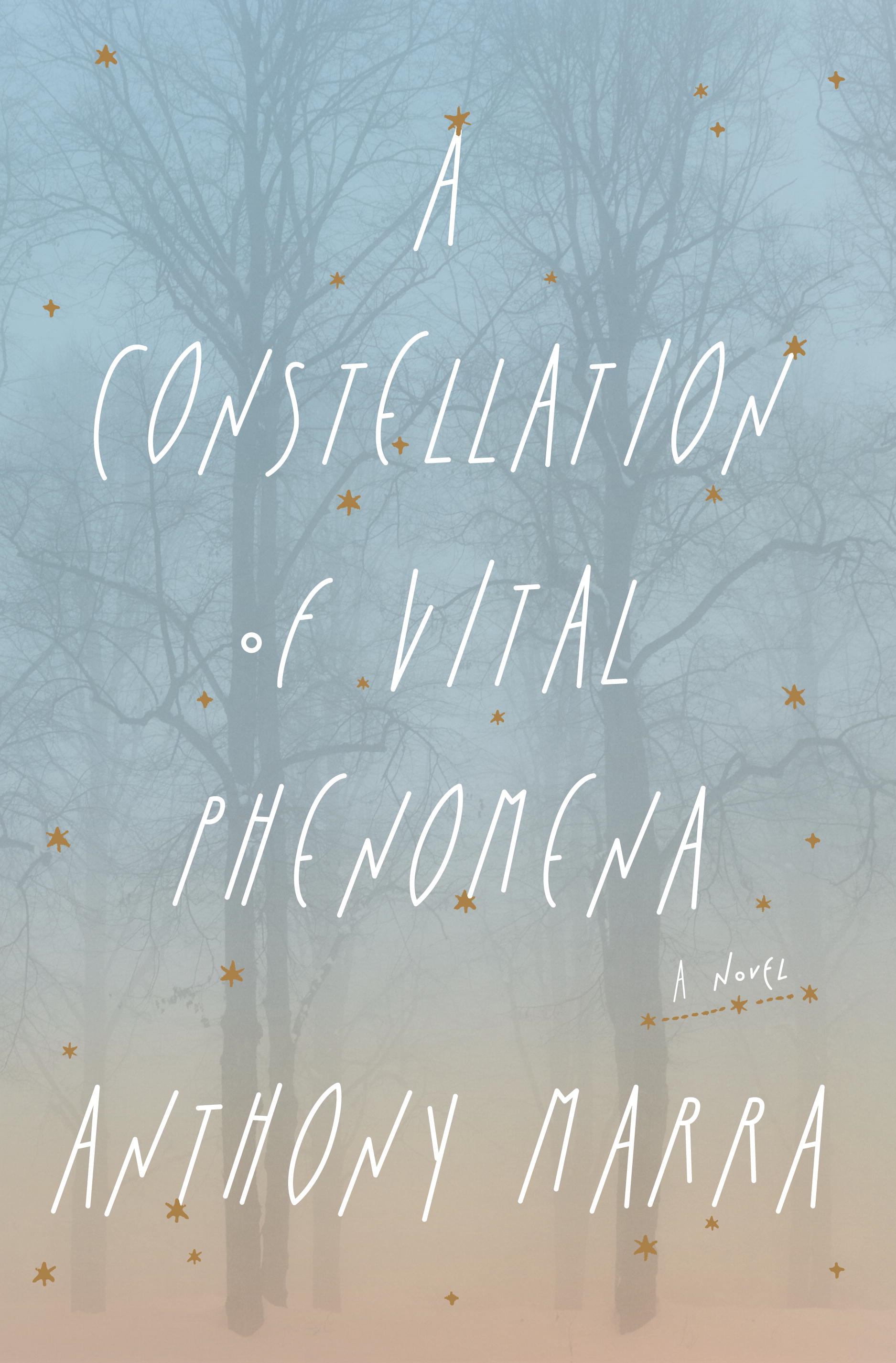 A Constellation of Vital Phenomena