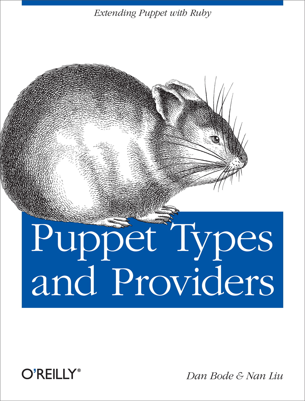 Puppet Types and Providers By: Dan Bode,Nan Liu