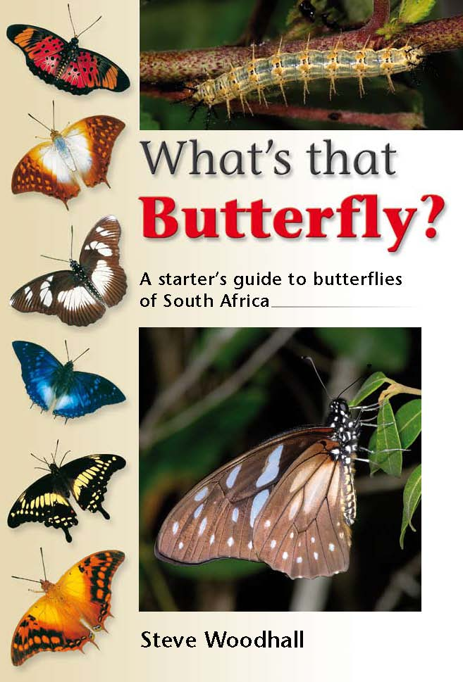 What's that Butterfly? A starter?s guide to butterflies of South Africa