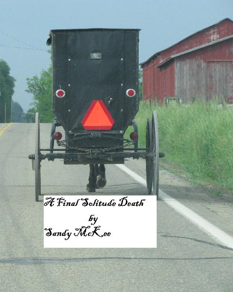 A Final Solitude Death: An Amish Country Murder Mystery