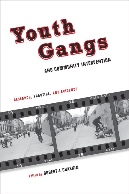 Youth Gangs and Community Intervention