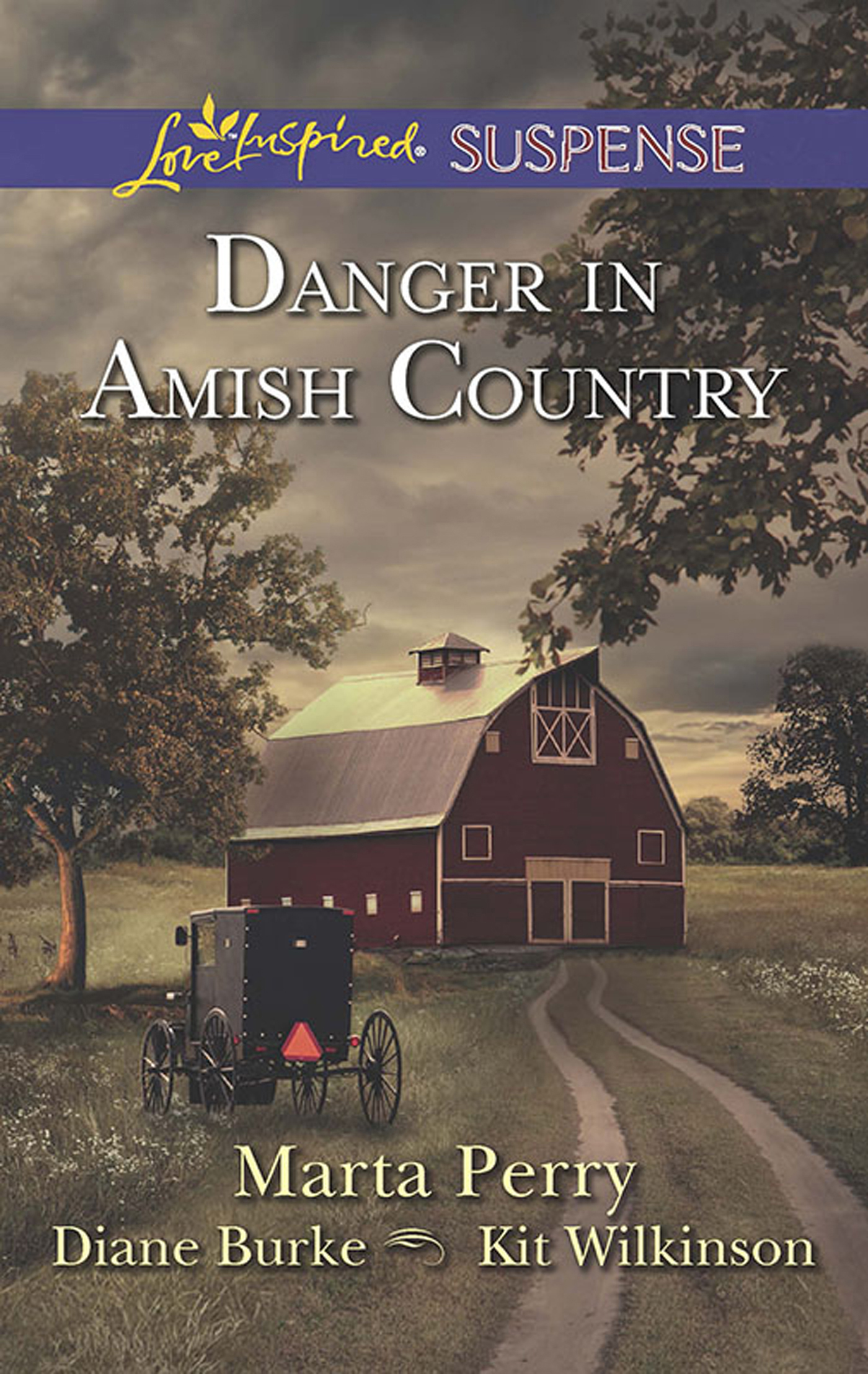 Danger in Amish Country (Mills & Boon Love Inspired Suspense)