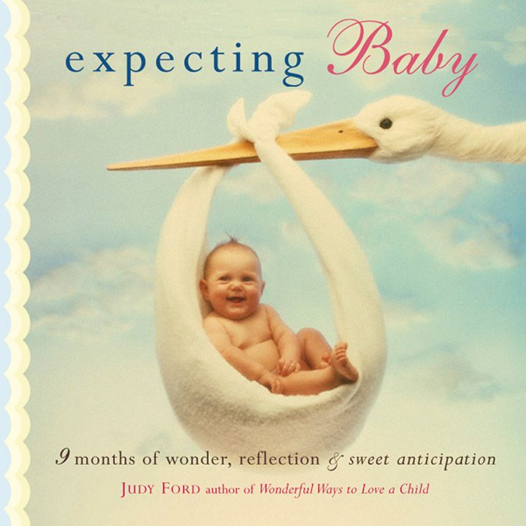 Expecting Baby: Nine Months of Wonder Reflection and Sweet Anticipation By: Judy Ford Ame Mahler Beanland