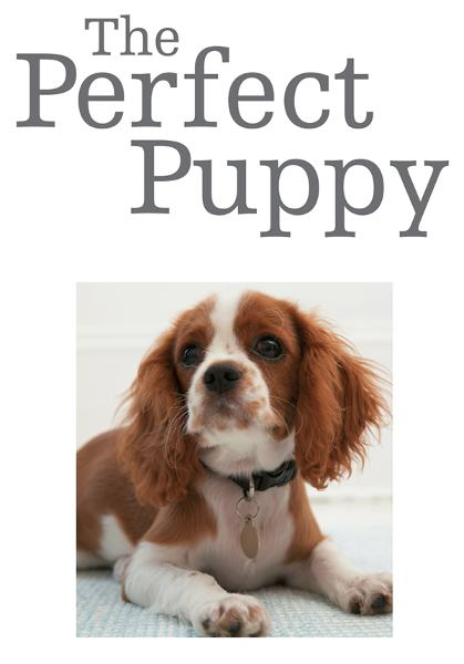 The Perfect Puppy Take Britain's Number One Puppy Care Book With You!