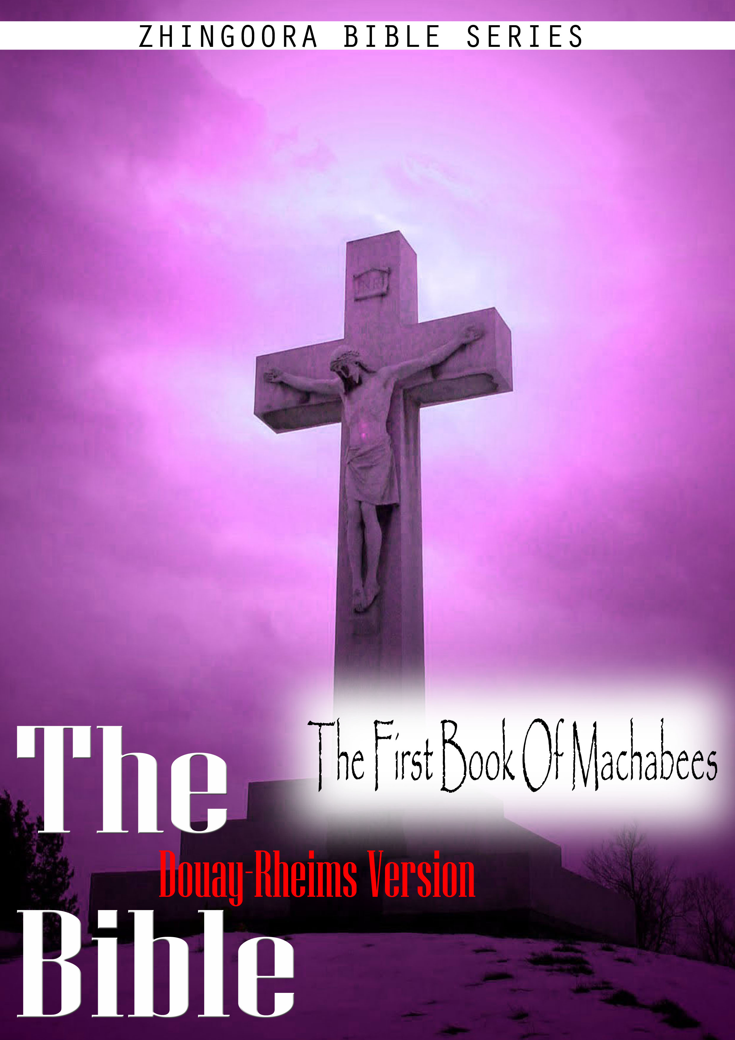 The Holy Bible Douay-Rheims Version,The First Book Of Machabees By: Zhingoora Bible series