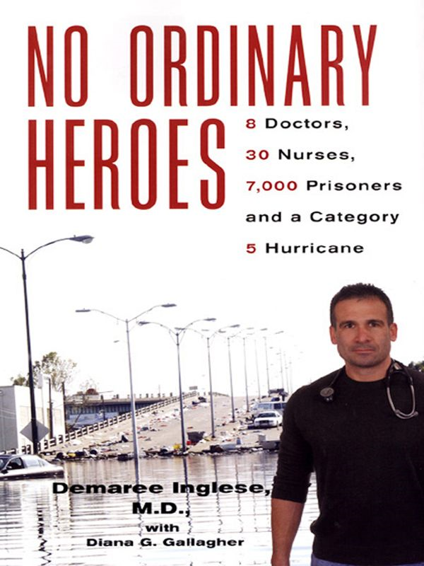 No Ordinary Heroes: By: Demaree Inglese,Diana G. Gallagher