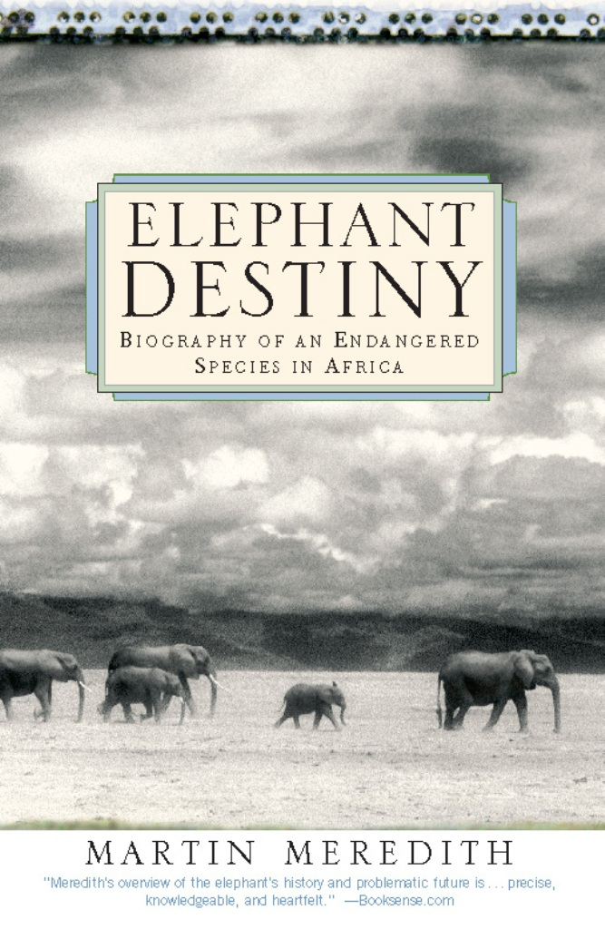 Elephant Destiny