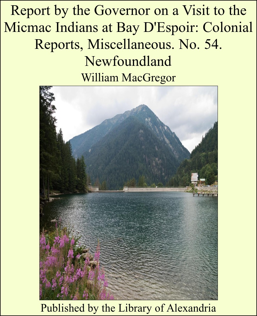 Report by the Governor on a Visit to the Micmac Indians at Bay D'Espoir: Colonial Reports, Miscellaneous. No. 54. Newfoundland By: William MacGregor