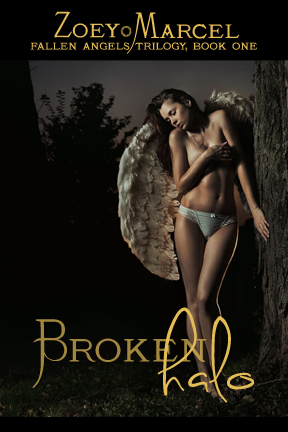 Broken Halo: Fallen Angels Trilogy, Book One