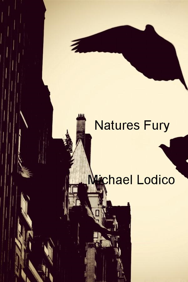Natures Fury By: Michael Lodico