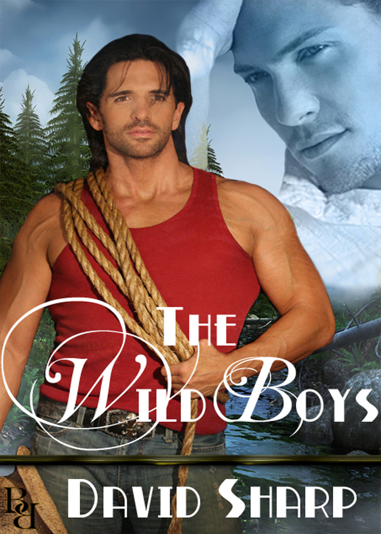 The Wild Boys By: David Sharp