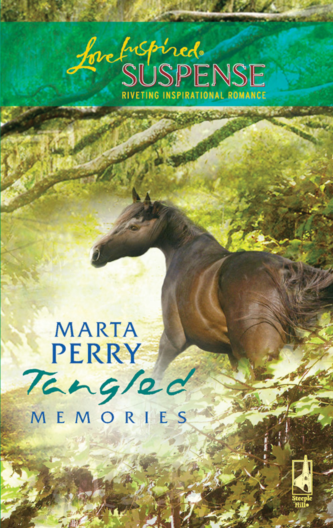 Tangled Memories (Mills & Boon Love Inspired Suspense)