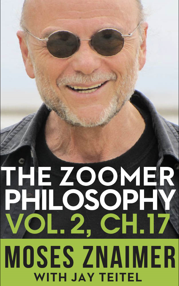 The Zoomer Philosophy Volume 2 Chapter 17