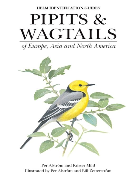 Pipits and Wagtails of Europe, Asia and North America