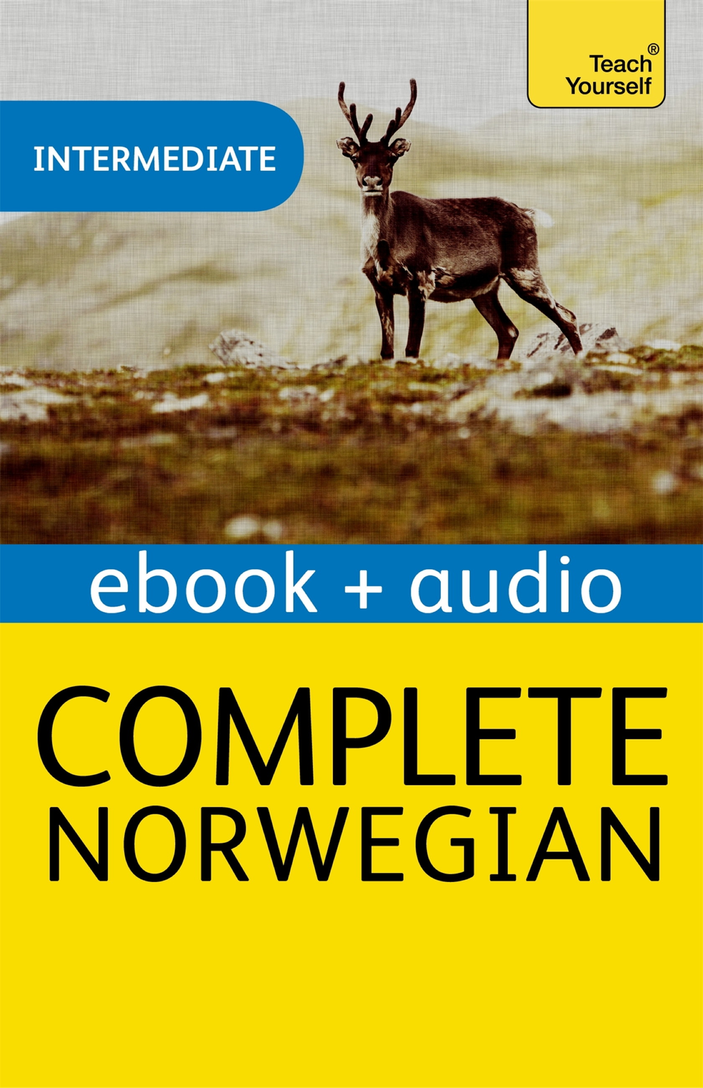 Complete Norwegian: Teach Yourself Enhanced Edition