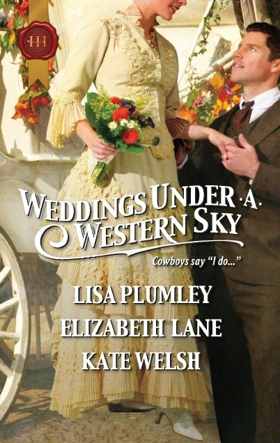 Weddings Under a Western Sky: The Hand-Me-Down Bride\The Bride Wore Britches\Something Borrowed, Something True By: Elizabeth Lane,Kate Welsh,Lisa Plumley