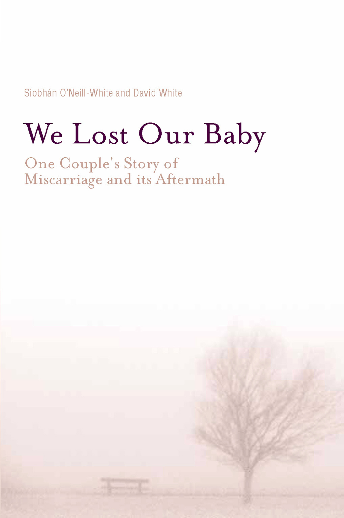 We Lost Our Baby By: David White,Siobhan O'Nill-White