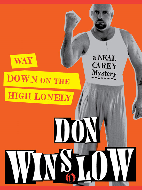 Way Down on the High Lonely By: Don Winslow