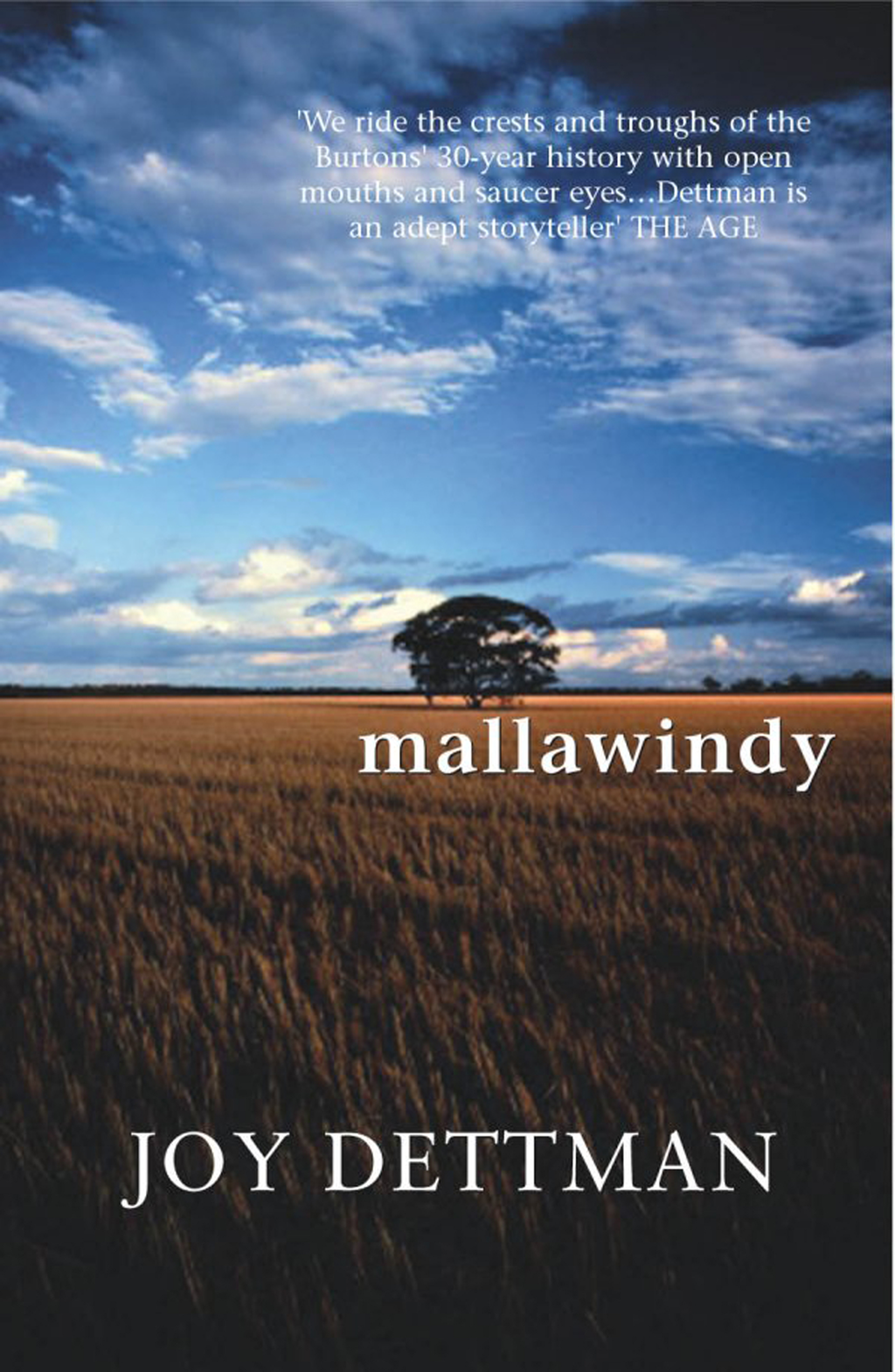 Mallawindy: A Mallawindy Novel 1