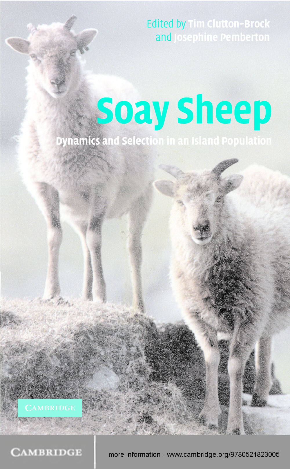 Soay Sheep Dynamics and Selection in an Island Population