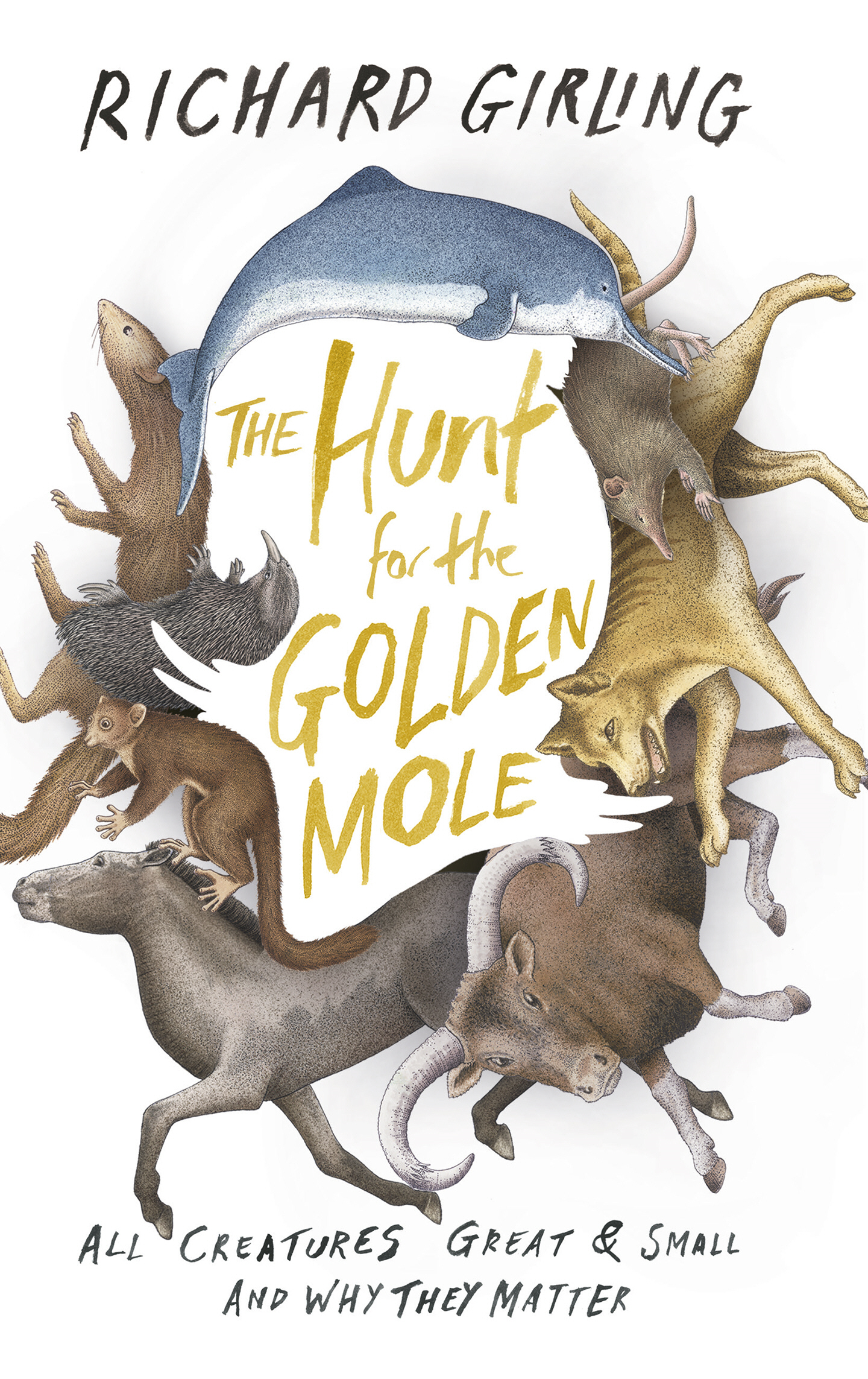 The Hunt for the Golden Mole All Creatures Great and Small,  and Why They Matter