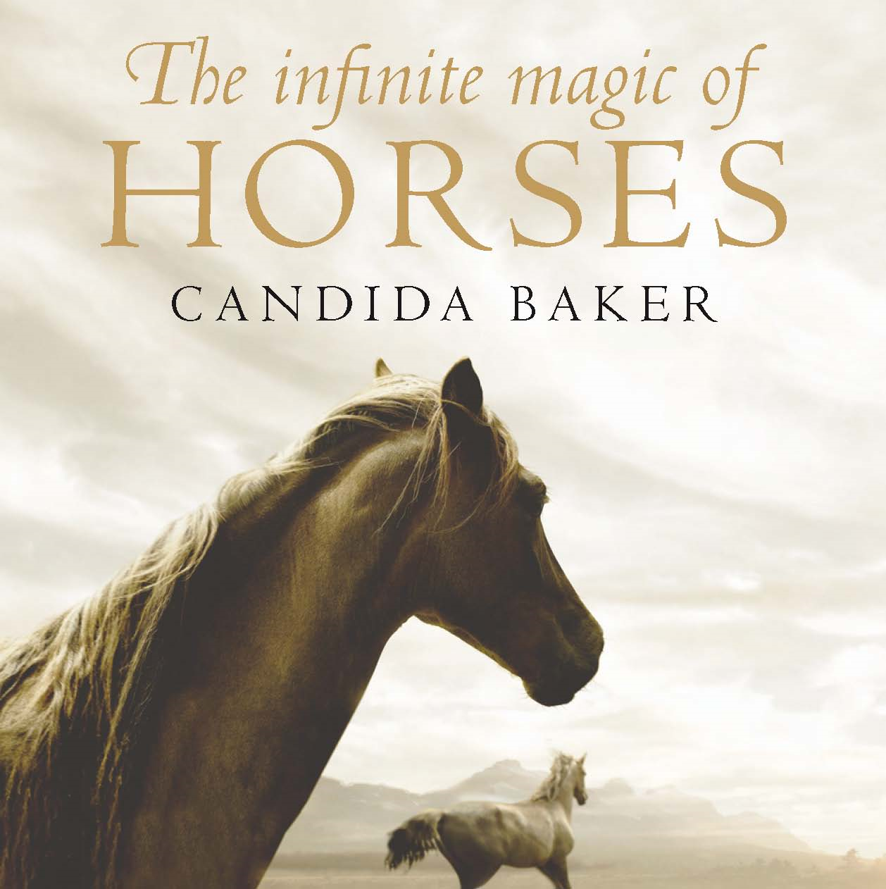 The Infinite Magic of Horses By: Candida Baker