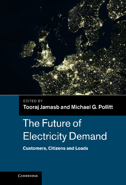 The Future of Electricity Demand Customers,  Citizens and Loads