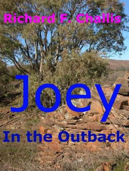 Joey in the Outback