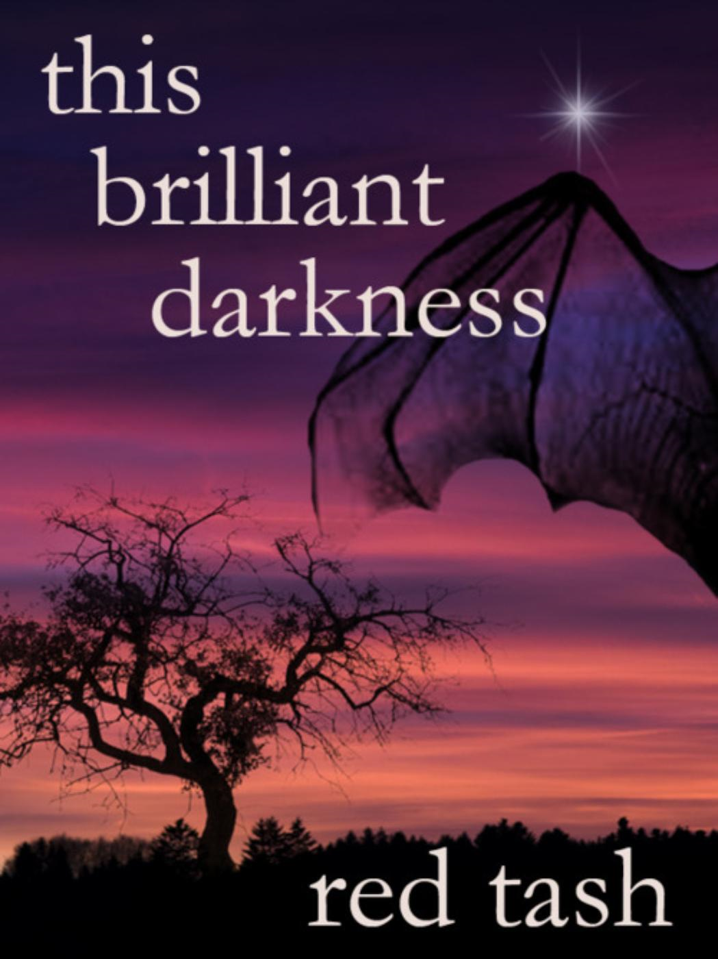 This Brilliant Darkness (A Dark Contemporary Fantasy)