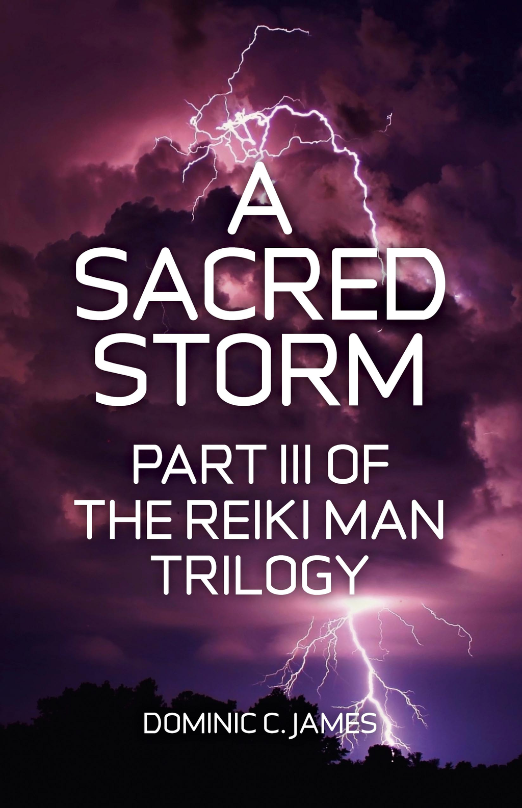 A Sacred Storm: Part III of The Reiki Man Trilogy By: Dominic C. James