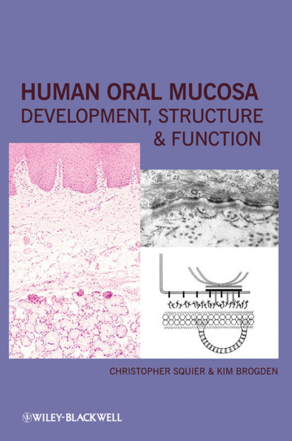 Human Oral Mucosa: Development, Structure and Function