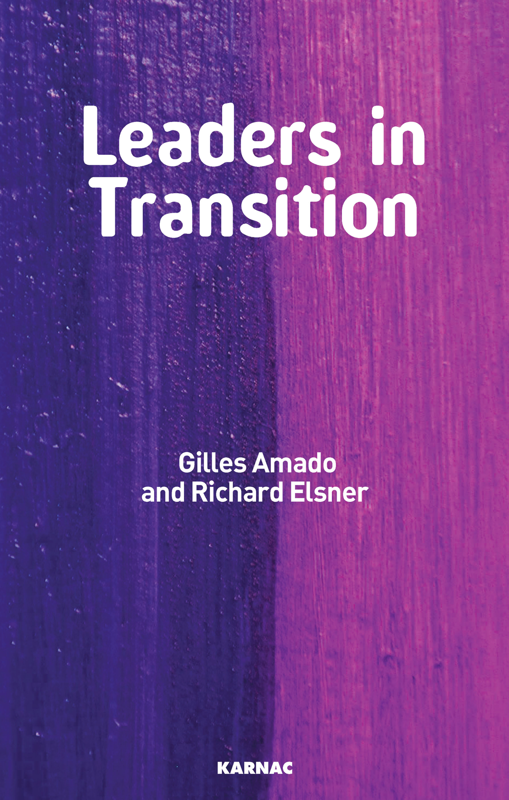 Leaders in Transition: The Tensions at Work as New Leaders Take Charge By: Gilles Amado,Richard Elsner