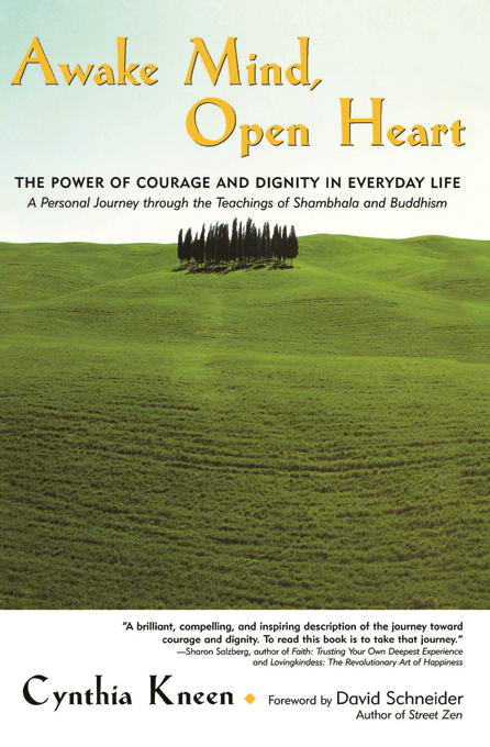Awake Mind, Open Heart: The Power of Courage and Dignity in Everyday Life