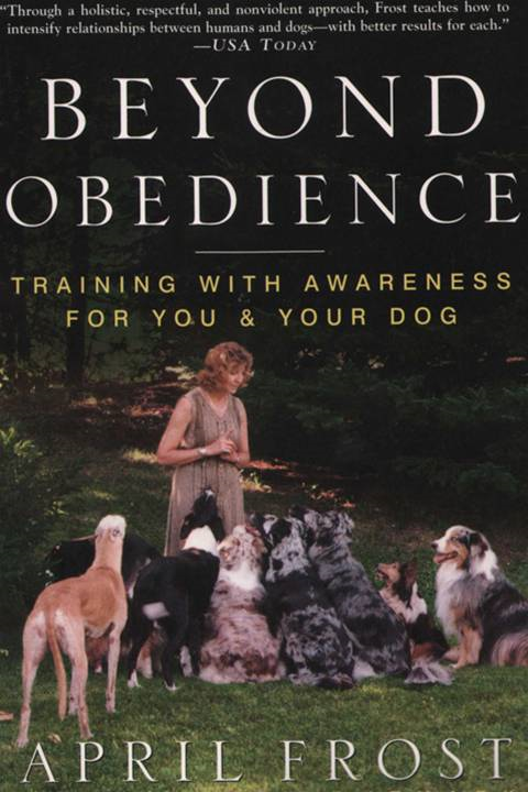 Beyond Obedience By: April Frost,Rondi Lightmark