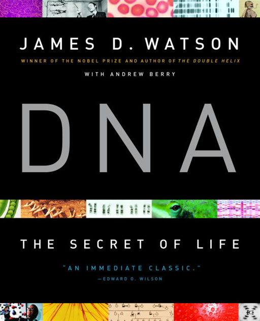 DNA By: Andrew Berry,James D. Watson