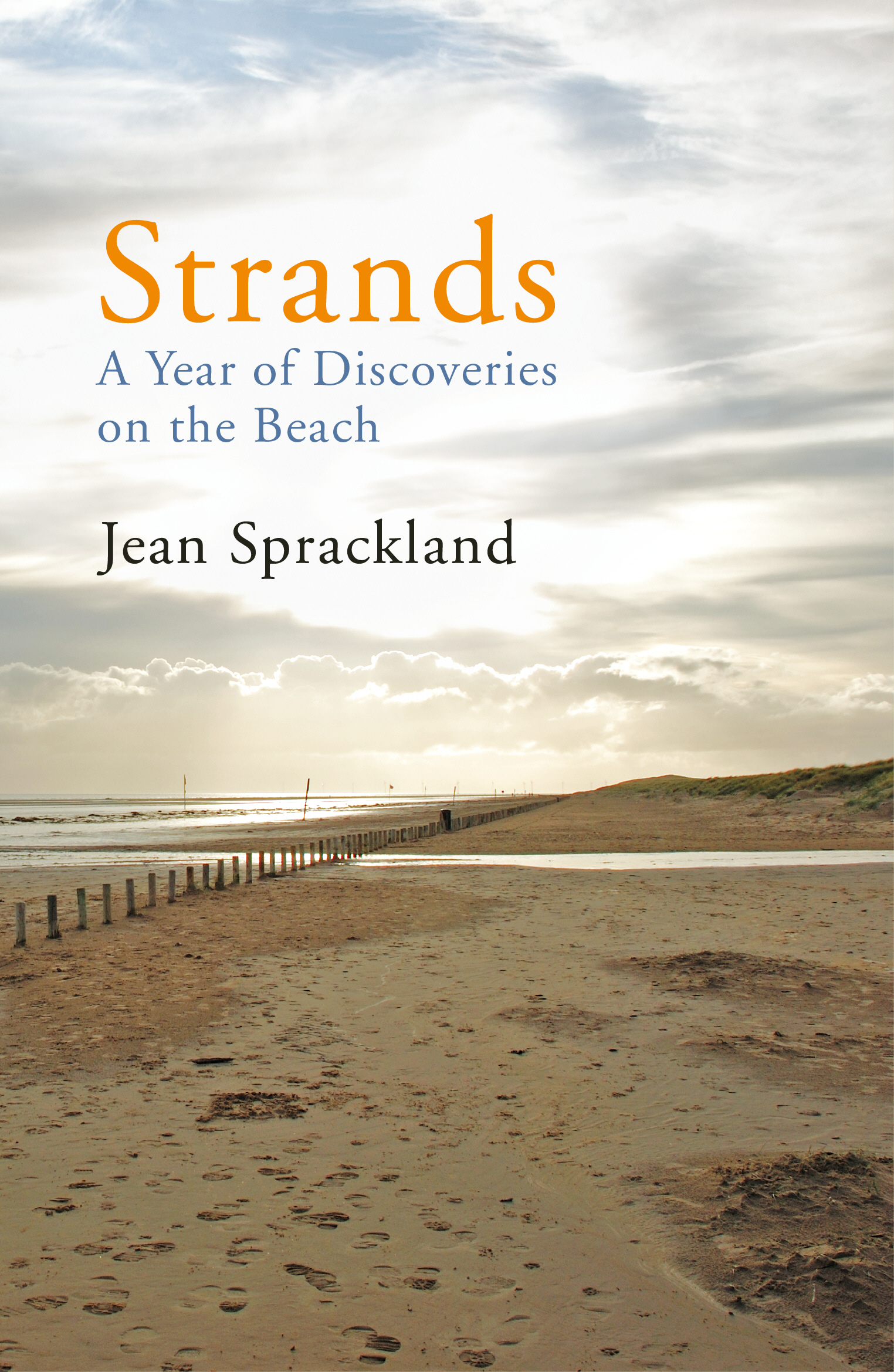 Strands A Year of Discoveries on the Beach
