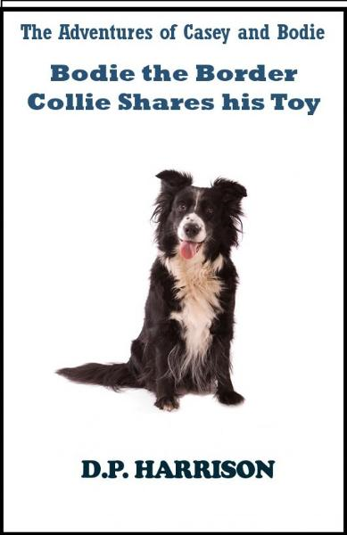 Bodie the Border Collie Shares His Toy
