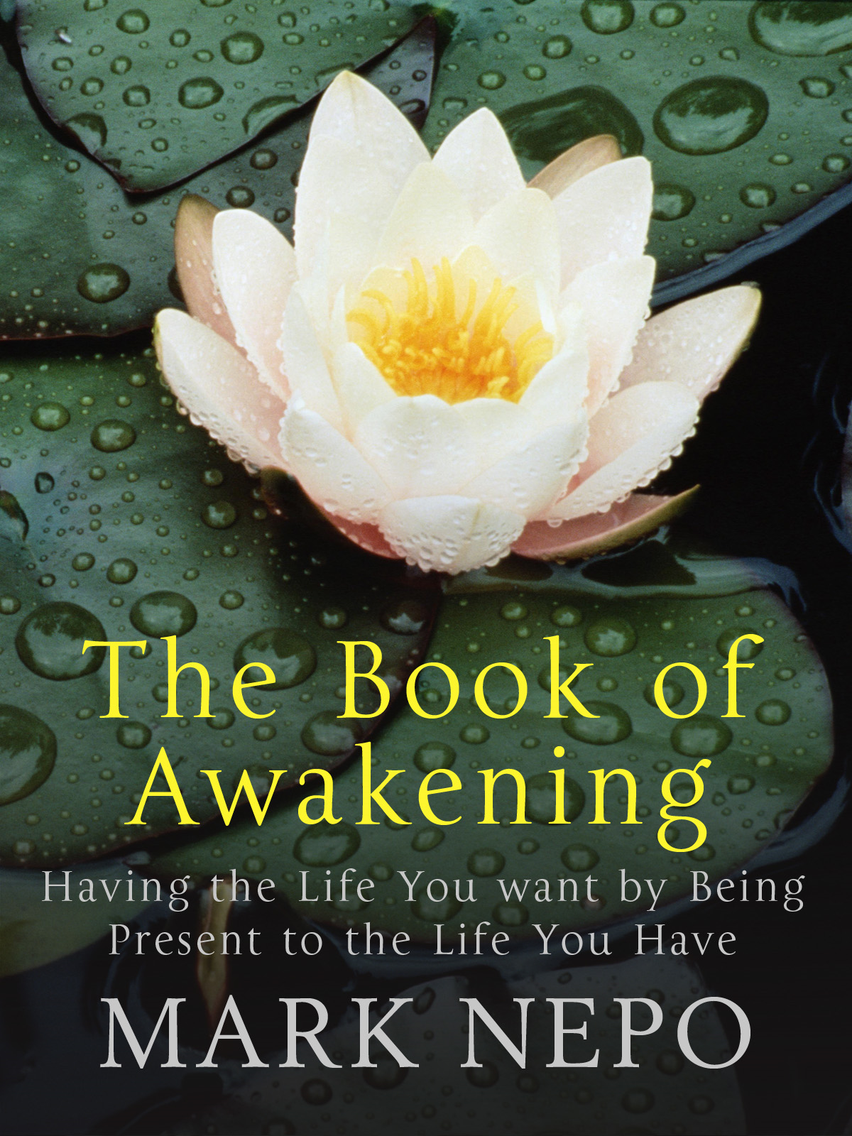 The Book of Awakening Having the Life You Want By Being Present in the Life You Have