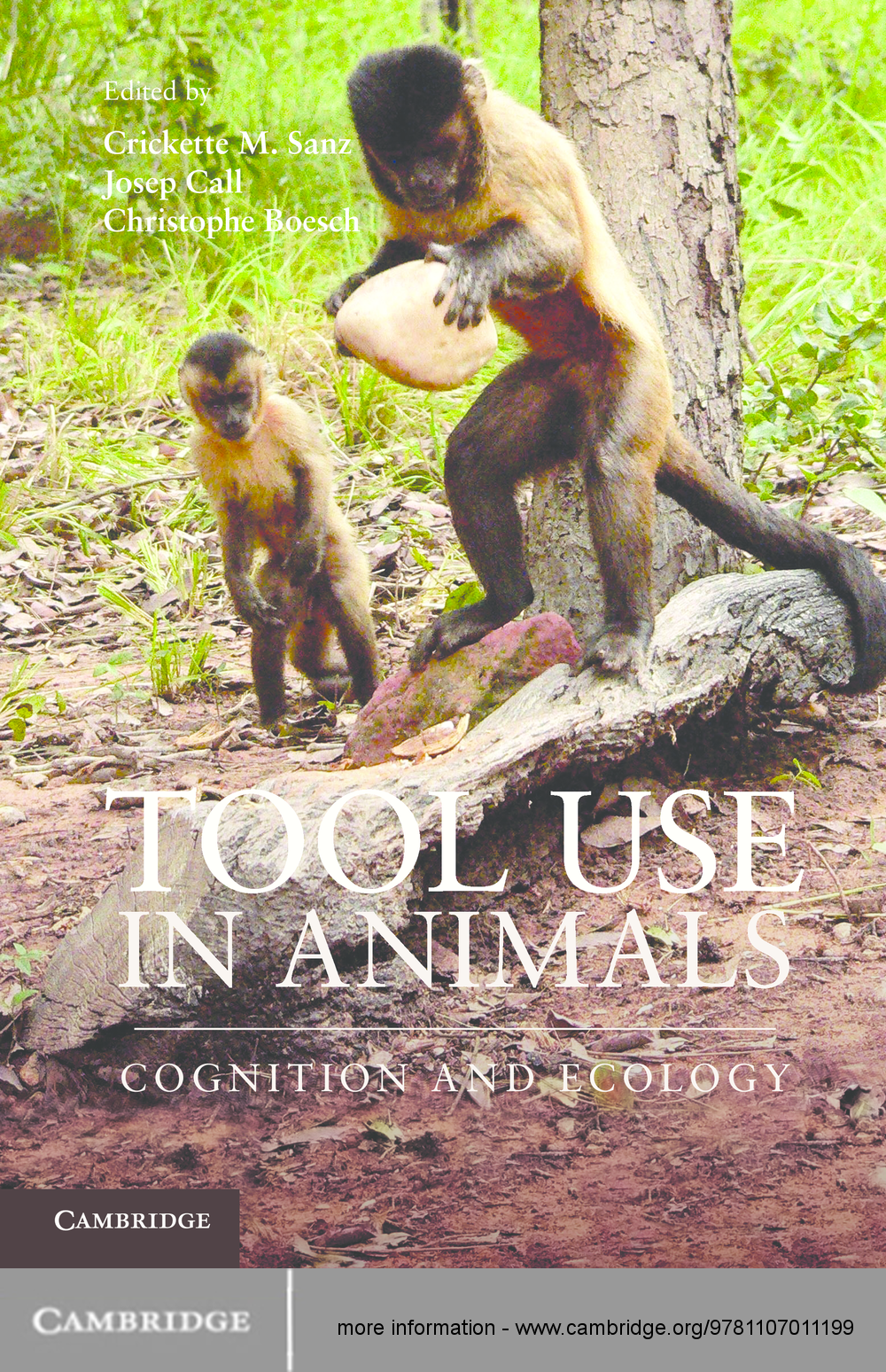 Tool Use in Animals Cognition and Ecology
