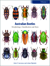 Australian Beetles Volume 1 Morphology,  Classification and Keys