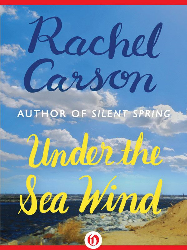 Under the Sea Wind By: Rachel Carson