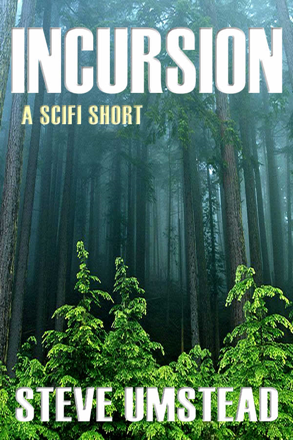 Incursion By: Steve Umstead