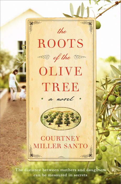 The Roots of the Olive Tree By: Courtney Miller Santo